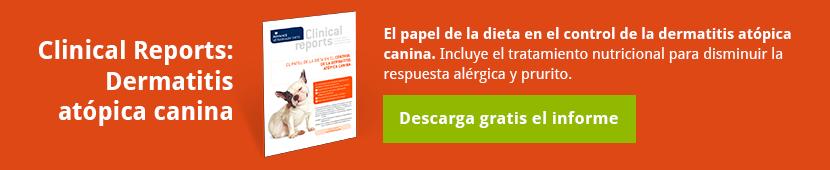 Descarga el informecon el Papel de la dieta en laDermatitis Atópica Canina [Cómo disminuir la respuesta inflamatoria alérgica y el prurito]