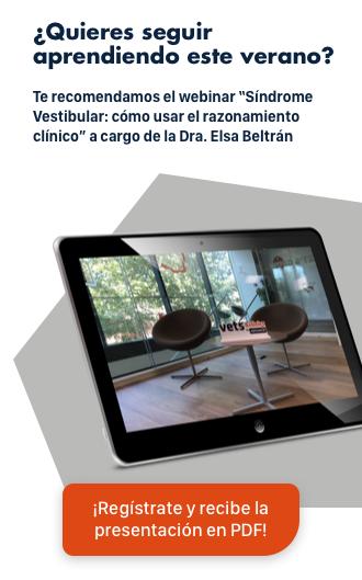Webinar Elsa Beltrán