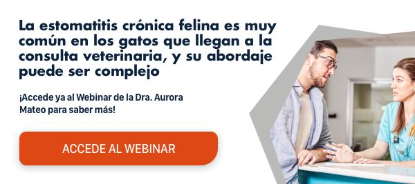 ¿Quieres saber más sobre la estomatitis crónica felina y te perdiste el  webinar? Accede al webinar de forma gratuita aquí