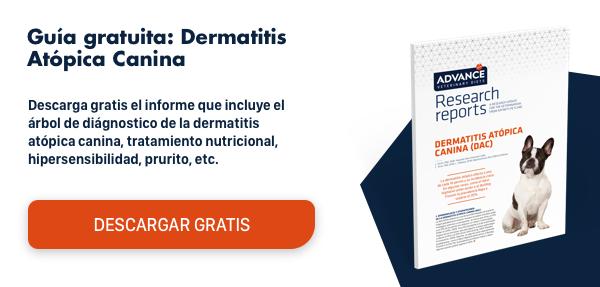 Descarga el informe:Dermatitis atópica canina