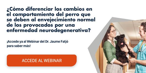 Descubre cómo diferenciar el simple envejecimiento de la disfunción cognitiva  con el Webinar del Dr. Jaume Fatjó. ¡Accede gratis aquí!