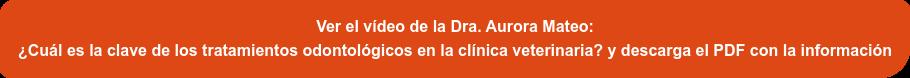 ¡Ver el vídeo de la Dra. Aurora Mateo sobre  ¿Cuál es la clave de los tratamientos odontológicos en la clínica veterinaria?  y descarga el PDF con la información!