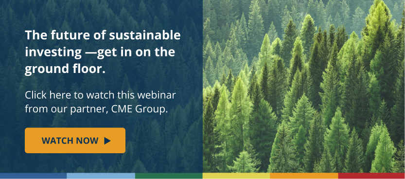 The Future of Sustainable Investing - Get in on the Ground Floor