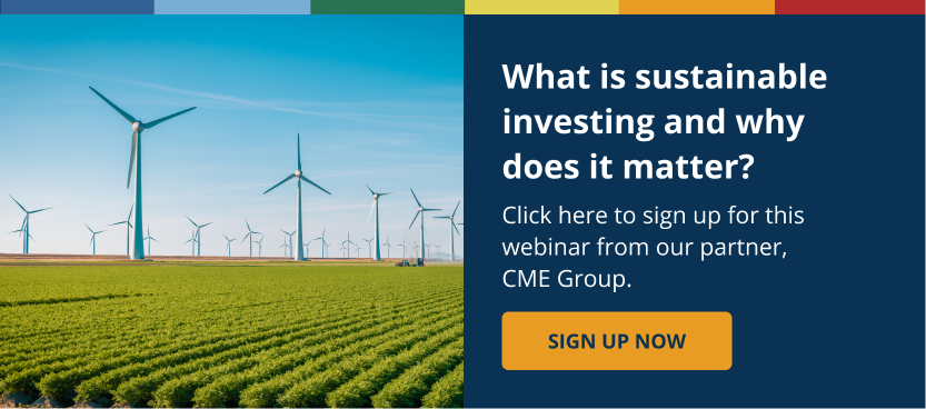 What Is Sustainable Investing and Why Does it Matter?