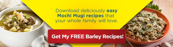 Free Mochi Mugi Sample