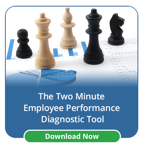 Employee Performance Diagnostic