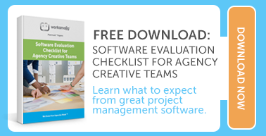 software evaluation checklist