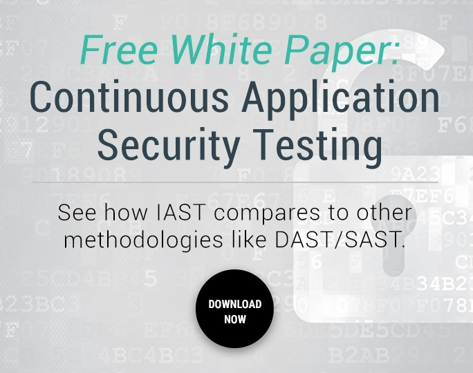 Continuous Application Security Testing