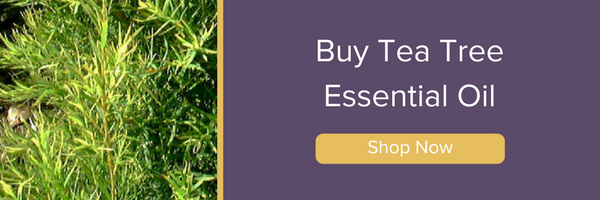 Shop Tea Tree Oil