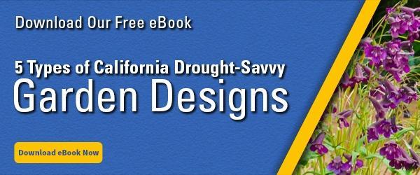 5 Types of California Drought-Savvy Garden Designs