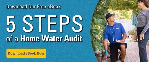 Home Water Audit