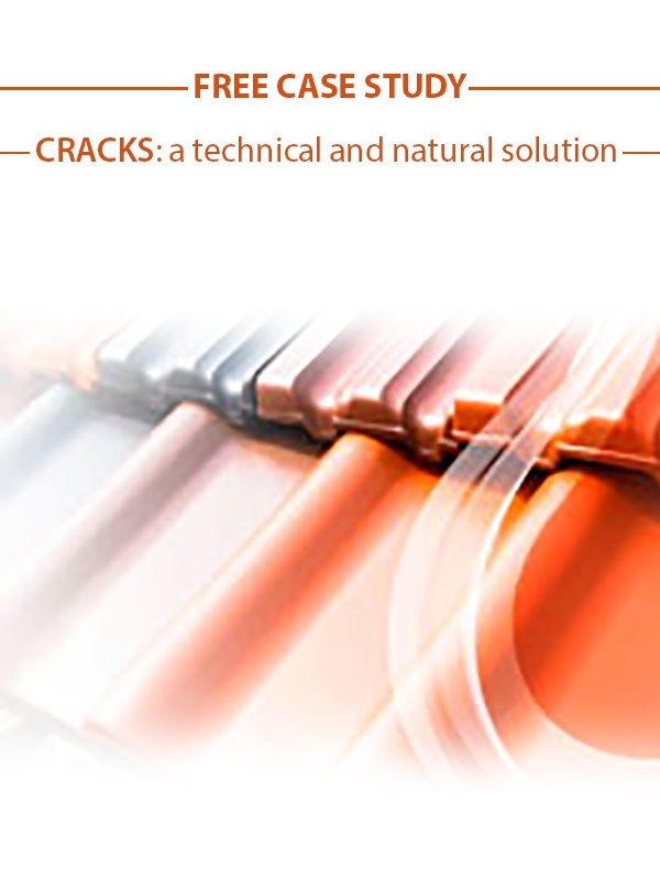 Download free case study on cracks