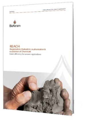 REACH ebook
