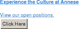Experience the Culture at Annese  View our open positions.  Click Here