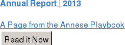 Annual Report | 2013  A Page from the Annese Playbook Read it Now