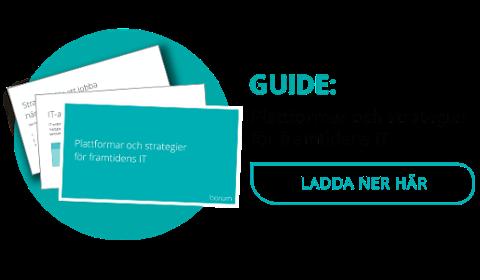 Ladda ner guiden plattformar och strategier för framtiden IT