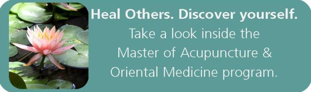A look inside the Master of Acupuncture & Oriental Medicine Program.