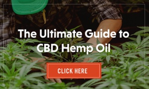 Ultimate Guide to CBD Hemp Oil CTA