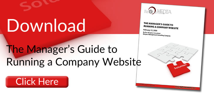 Download - The Manager's Guide to Running a company Website.