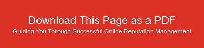Download This Page as a PDF Guiding You Through Successful Online Reputation  Management