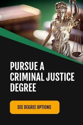 pursue criminal justice degree