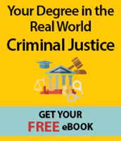 download criminal justice career guide