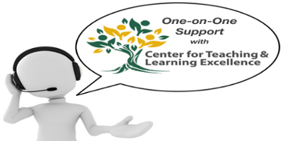 One-on-One Support with Center for Teaching and Learning Excellence