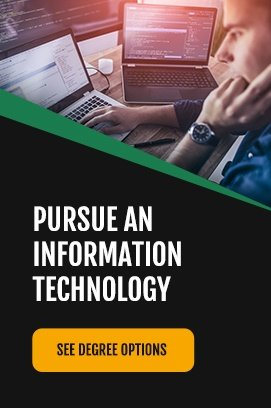 pursue information technology degree