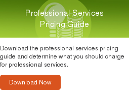 Professional Services Pricing Guide  Download the professional services pricing guide and determine what you should  charge for professional services.  Download Now