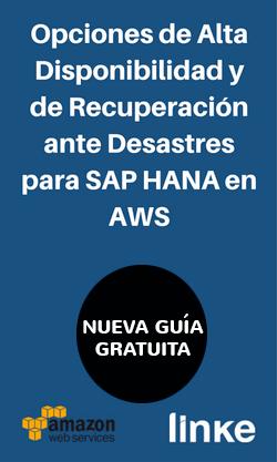 Guia HD & DR para SAP en AWS
