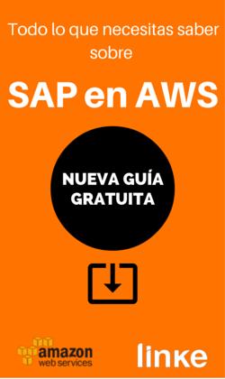 Descarga la guía: Todo lo que necesitas saber sobre SAP en AWS