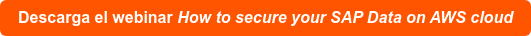 Descarga el webinar How to secure your SAP Data on AWS cloud