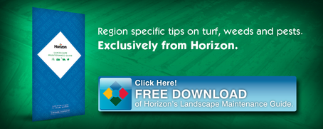 Free Landscape Maintenance Guide - Click Here