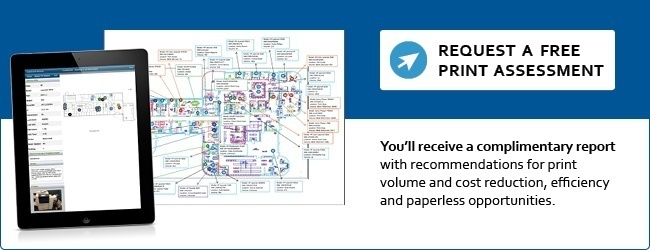 Free Print Assessment