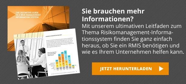 Detaillierte Informationen über den Einsatz eines Risikomanagement-Informationssystems (RMIS)