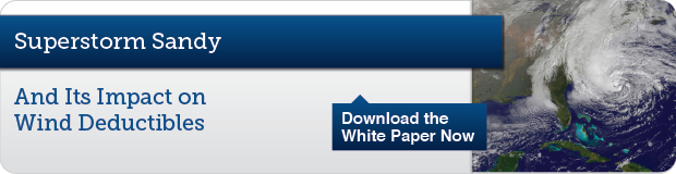 Download the Whitepaper Now