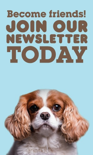 Join Our Newsletter Today!