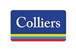 Property Leaders' Summit 2021 - Major Sponsor - Colliers International