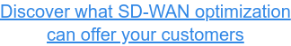 Discover what SD-WAN optimization  can offer your customers
