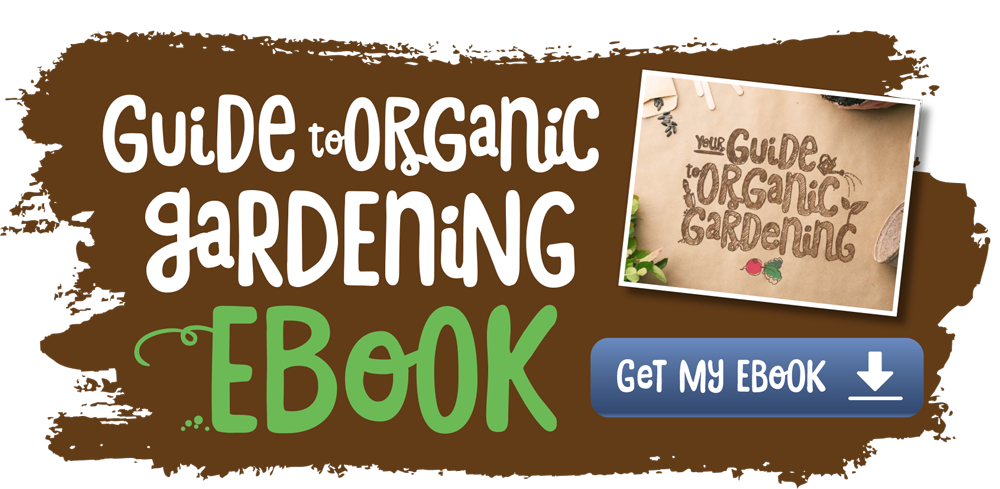 Shop organic food - free shipping
