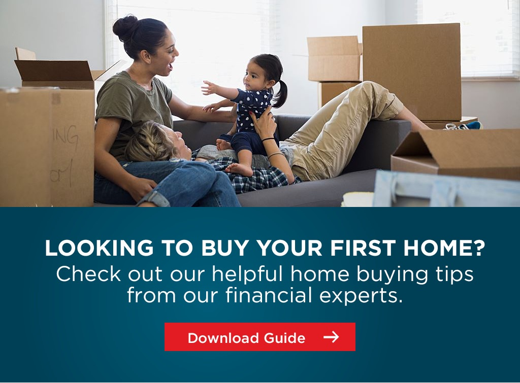 Download The First Time Buyers Guide