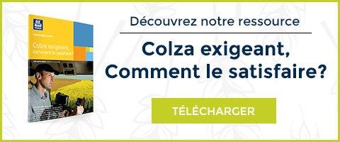telechargement-ressource-colza