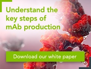 [White paper] Considerations in monoclonal antibody production