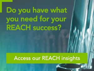 Access our REACH insights