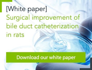 [White paper] Improving the bile duct catheterization procedure in rats