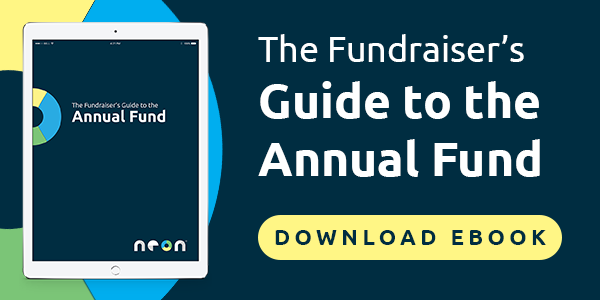 download annual fund ebook