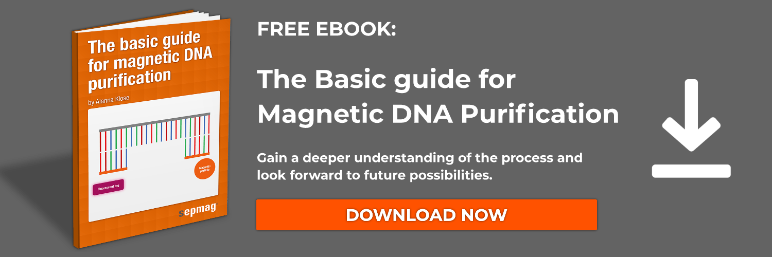magnetic dna purification