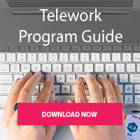 Click to download Telework Program Guide