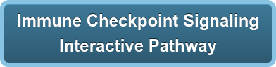 Immune Checkpoint Signaling Interactive Pathway