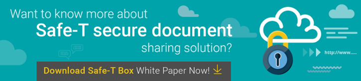 Download Safe-T Box White Paper